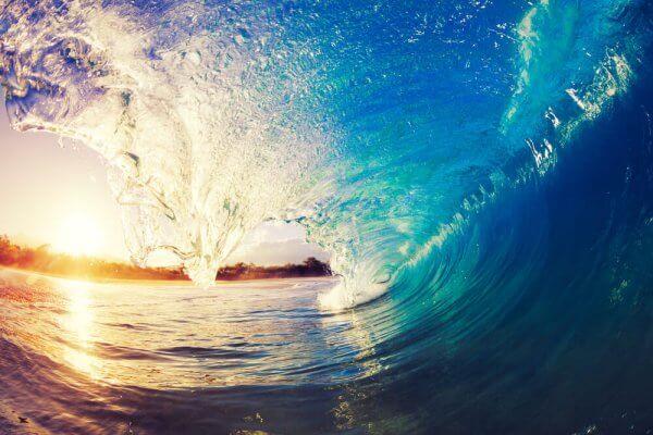 Vertus_pédagogiques_du_surf