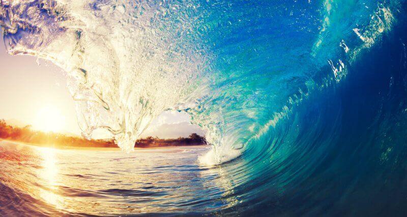 Vertus pédagogiques : quelles sont les valeurs du surf ?